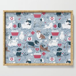 Veterinary medicine, happy and healthy friends // pastel blue background Serving Tray