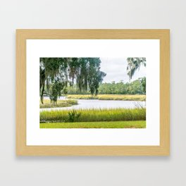 By the Bayou Framed Art Print