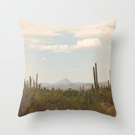 Down Desert Roads, II Throw Pillow