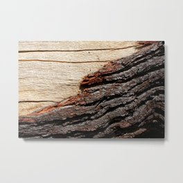 Wood Duo Metal Print