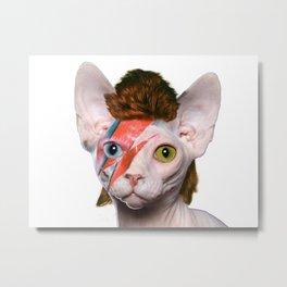 Bowie Cat Metal Print