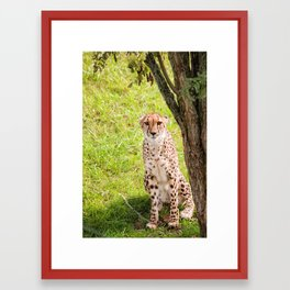 Hey Kitty Framed Art Print