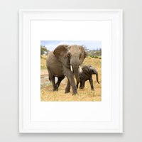 elephants Framed Art Prints featuring Elephants by go.designg
