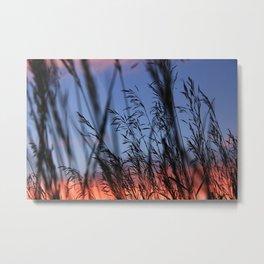 Sunset///Straw Metal Print