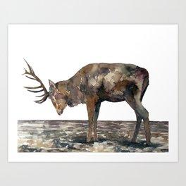 Deer #1 Art Print