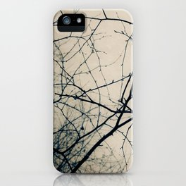 Beneath Bare Branches iPhone Case