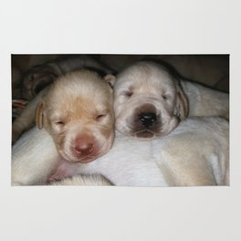 Little Polar Bears with yellow lab puppies Rug
