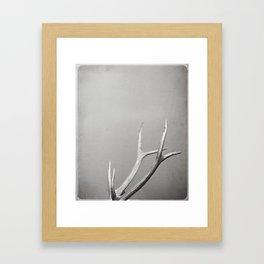 fig. 01   antlers Framed Art Print