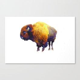 Buffalo Abstract #2 Canvas Print