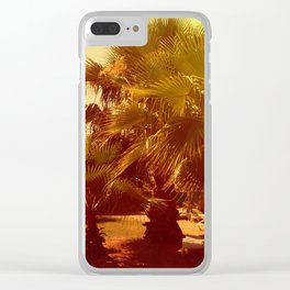 palm tree on a sunny day, toning Clear iPhone Case