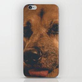 Sad Princess Dog iPhone Skin