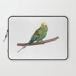 Budgerigar Parrot Laptop Sleeve