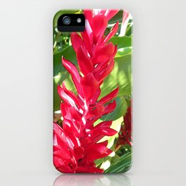 Red Ginger iPhone Case