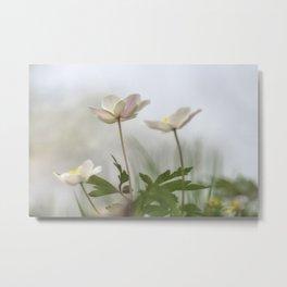 Delicate Springtime Metal Print