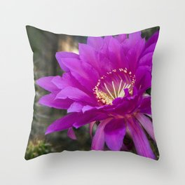 Echinopsis in Hot Pink Throw Pillow