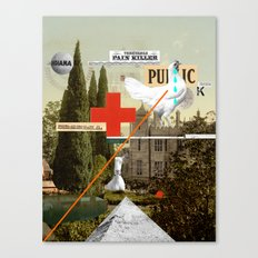 Pain Killer Canvas Print