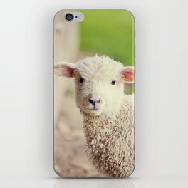 Little Lamb I iPhone Skin