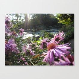 Rays on Monet's Garden Canvas Print