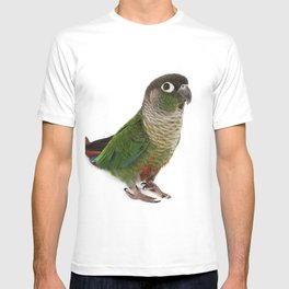 Zeph - Green Cheek Conure T-shirt