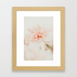 Burnt Orange Peony Framed Art Print