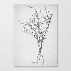 Les Fleurs III Canvas Print