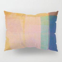 Hippo Sunken Pillow Sham
