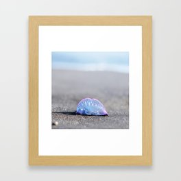 man-of-war Framed Art Print
