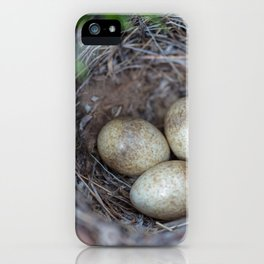 Horned lark nest and eggs - Yellowstone National Park iPhone Case