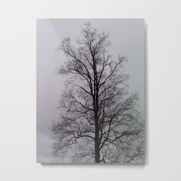 Lung tree with Birds Metal Print