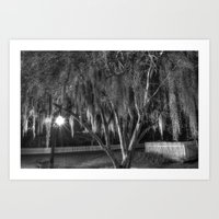 spanish Art Prints featuring Spanish Moss by Kent Moody