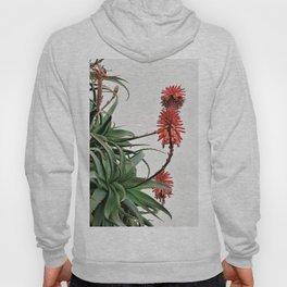 exotic design Hoody