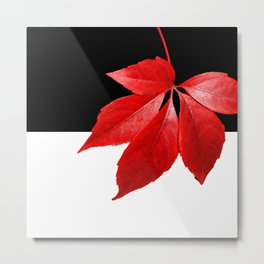Red Leaf With Black & White Metal Print