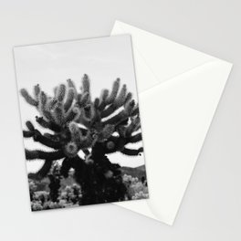 Cholla Cactus Garden XI Stationery Cards