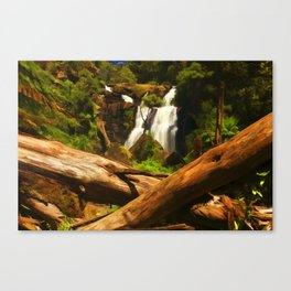 Trees and Falls Canvas Print