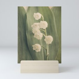 Scents of Spring - Lily of the Valley iii Mini Art Print