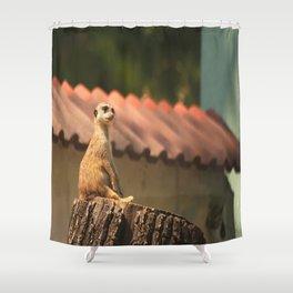Meerkat Funny Observer #decor #society6 Shower Curtain