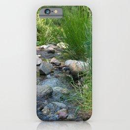 Stream in Mt Lemmon iPhone Case