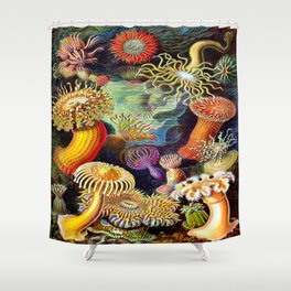 Under the Sea : Sea Anemones (Actiniae) by Ernst Haeckel Shower Curtain