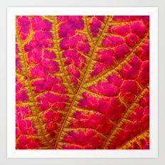 leaf abstract I Art Print