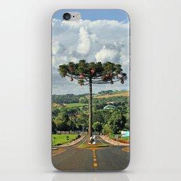 Araucaria da Tocantins iPhone Skin