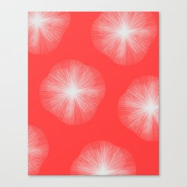 Coral Bust Canvas Print