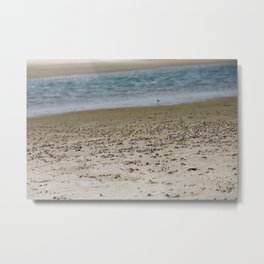 Crab Beach Metal Print