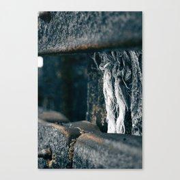 Promethius beach Canvas Print