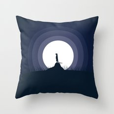 Looking For Throw Pillow