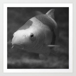 Under Water II Art Print