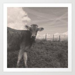 vintage cow Art Print
