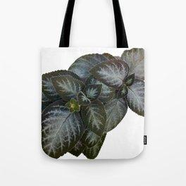 Gesneriad Tote Bag