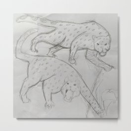 Two Snow Leopards Metal Print