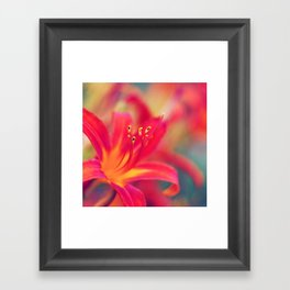 Life is a Flower Nature Photography Framed Art Print