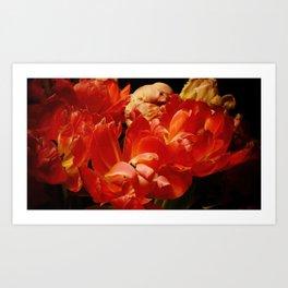 Parrot Tulips bouquet Close up IX Art Print